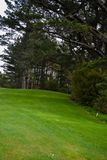 Γήπεδο του γκολφ πράσινο Στοκ Εικόνες