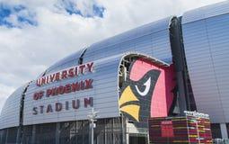 Γήπεδο ποδοσφαίρου καρδιναλίων της Αριζόνα στοκ φωτογραφία με δικαίωμα ελεύθερης χρήσης