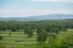 Γήπεδο του γκολφ με την πανέμορφη πράσινη και φανταστική θέα βουνού Στοκ φωτογραφίες με δικαίωμα ελεύθερης χρήσης