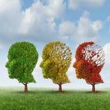 Γήρανση εγκεφάλου Στοκ Εικόνες