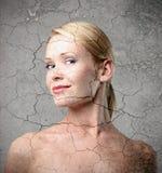 γήρανση Στοκ φωτογραφίες με δικαίωμα ελεύθερης χρήσης