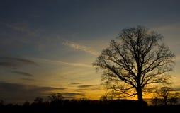 γαλήνιο ηλιοβασίλεμα Στοκ εικόνα με δικαίωμα ελεύθερης χρήσης