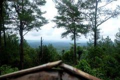 γαλαζοπράσινος ουρανός τοπίων στοκ φωτογραφία