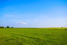 γαλαζοπράσινο τοπίο Στοκ Φωτογραφία