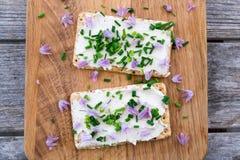 Γαλακτοκομικό και lactose-free vegan τυρί κρέμας δύο που διαδίδεται που γίνεται από το γ Στοκ Εικόνες