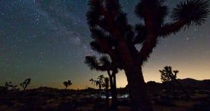 Γαλακτώδες τοπίο δέντρων του Joshua τρόπων νυχτερινού ουρανού απόθεμα βίντεο