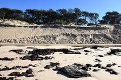 Γαλλία, Aquitaine, ατλαντική ακτή διάβρωσης στοκ φωτογραφία