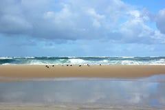 Γαλλία, Aquitaine, ατλαντική παραλία στη πλημμυρίδα στοκ φωτογραφία