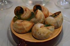 Γαλλικά τρόφιμα σαλιγκαριών στον πίνακα εστιατορίων Στοκ φωτογραφίες με δικαίωμα ελεύθερης χρήσης