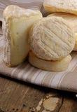 γαλλική επιλογή τυριών Στοκ Φωτογραφίες