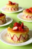 γαλλική φράουλα κέικ Στοκ Εικόνα