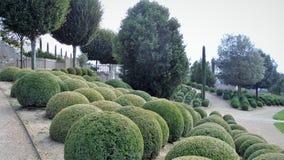 Γαλλικός κανονικός κήπος στοκ εικόνες