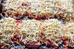 γαλλικό κρέας Στοκ εικόνες με δικαίωμα ελεύθερης χρήσης
