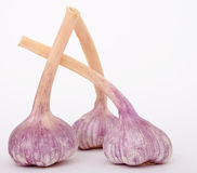 γαλλικό κρεμμύδι σκόρδο&upsi Στοκ φωτογραφίες με δικαίωμα ελεύθερης χρήσης
