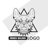 Γαλλικό λογότυπο σκυλιών μπουλντόγκ στοκ φωτογραφία