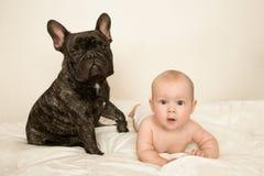 Γαλλικό μπουλντόγκ με ένα μικρό μωρό παιδιών έκπληκτο να βρεθεί στο κρεβάτι μου Στοκ Εικόνα