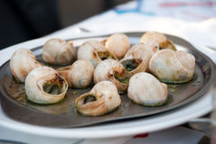 γαλλικό σαλιγκάρι γευμά Στοκ Φωτογραφία