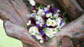Γαμήλια ανθοδέσμη στο δέντρο, απόθεμα βίντεο