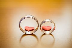 Γαμήλια δαχτυλίδια, γαμήλια δαχτυλίδια στη ημέρα γάμου Στοκ εικόνα με δικαίωμα ελεύθερης χρήσης