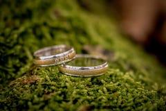 Γαμήλια δαχτυλίδια, γαμήλια δαχτυλίδια στη ημέρα γάμου Στοκ Εικόνα
