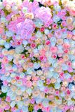Γαμήλια πρόσκληση ή νυφική πρόσκληση ντους ή πρότυπο καρτών ημέρας μητέρων ` s, που διακοσμείται με το πλαίσιο λουλουδιών στοκ εικόνες με δικαίωμα ελεύθερης χρήσης