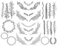 Γαμήλια floral γραφικά στοιχεία καθορισμένα, διαιρέτες, δάφνη Διακοσμητικό σχέδιο πρόσκλησης ελεύθερη απεικόνιση δικαιώματος