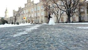 γαμήλιος χειμώνας νεόνυμφων νυφών υπαίθρια το ζεύγος στα γαμήλια φορέματα περπατά μέσω του χιονισμένου πάρκου, στα πλαίσια απόθεμα βίντεο