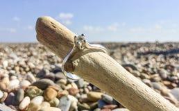 Γαμήλιο δαχτυλίδι διαμαντιών στην παραλία στοκ εικόνες