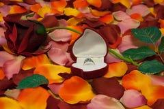Γαμήλιο δώρο στοκ φωτογραφίες