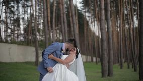 Γαμήλιο ζεύγος που κάνει ένα φιλί Καλοί νεόνυμφος και νύφη οικογένεια ευτυχής απόθεμα βίντεο