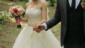 Γαμήλιο ζεύγος σε έναν περίπατο στο πάρκο Κίνηση και συναισθηματική στιγμή Κινηματογράφηση σε πρώτο πλάνο απόθεμα βίντεο