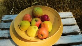 Γαμήλιο ντεκόρ με τα κεριά και μήλο αγροτικό απόθεμα βίντεο