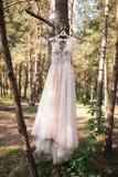 Γαμήλιο ρόδινο φόρεμα στην κρεμάστρα στο δέντρο στη δασική όμορφη εσθήτα Στοκ φωτογραφίες με δικαίωμα ελεύθερης χρήσης
