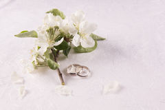 Γαμήλια έννοια με τα λουλούδια Apple-δέντρων Στοκ φωτογραφίες με δικαίωμα ελεύθερης χρήσης