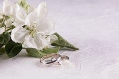 Γαμήλια έννοια με τα λουλούδια Apple-δέντρων Στοκ Εικόνες