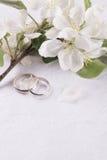 Γαμήλια έννοια με τα λουλούδια Apple-δέντρων Στοκ Εικόνα
