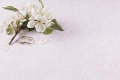 Γαμήλια έννοια με τα λουλούδια Apple-δέντρων Στοκ φωτογραφία με δικαίωμα ελεύθερης χρήσης
