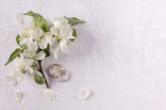 Γαμήλια έννοια με τα λουλούδια Apple-δέντρων Στοκ Φωτογραφίες