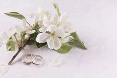 Γαμήλια έννοια με τα λουλούδια Apple-δέντρων Στοκ εικόνα με δικαίωμα ελεύθερης χρήσης