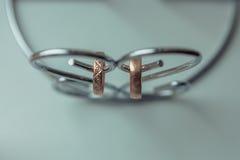 Γαμήλια δαχτυλίδια για τους εραστές στη δέσμευση ή το γάμο στοκ φωτογραφία