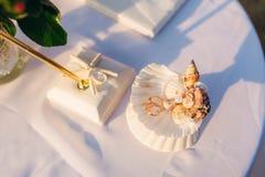 Γαμήλια δαχτυλίδια ενός πρόσφατα-παντρεμένου ζεύγους σε ένα μαξιλάρι για τα δαχτυλίδια Στοκ Εικόνες