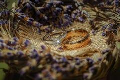 Γαμήλια δαχτυλίδια διαμαντιών Στοκ εικόνα με δικαίωμα ελεύθερης χρήσης