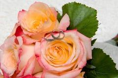 Γαμήλια δαχτυλίδια και τριαντάφυλλα Στοκ Εικόνες