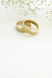 Γαμήλια δαχτυλίδια με το διάστημα αντιγράφων Στοκ εικόνα με δικαίωμα ελεύθερης χρήσης