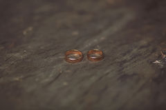 Γαμήλια δαχτυλίδια, που βρίσκονται στο κολόβωμα Στοκ Φωτογραφίες