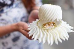 Γαμήλια δαχτυλίδια σε ένα κιβώτιο Στοκ Φωτογραφία