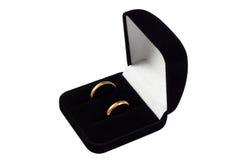 Γαμήλια δαχτυλίδια σε ένα κιβώτιο Στοκ εικόνες με δικαίωμα ελεύθερης χρήσης
