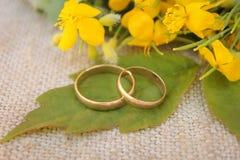 Γαμήλια δαχτυλίδια στο υπόβαθρο των κίτρινων λουλουδιών Στοκ Φωτογραφίες