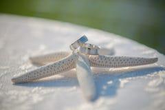 Γαμήλια γυαλιά και δαχτυλίδια στα κοχύλια και τον αστερία Πίνακας με την κάλυψη δαντελλών Στοκ φωτογραφίες με δικαίωμα ελεύθερης χρήσης