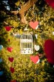 Γαμήλια εξαρτήματα στοκ φωτογραφίες